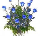 12 Blue Roses